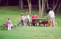 people on bikes in the park