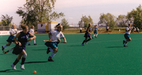 people playing field hockey